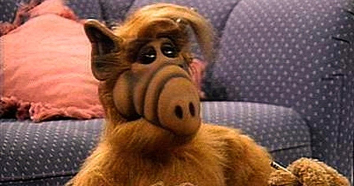 Alf, l'extraterrestre poilu qui aimait trop les chats serait en faite raciste !