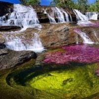 Cano Cristales, la rivière aux cinq couleurs à ne pas rater en Colombie