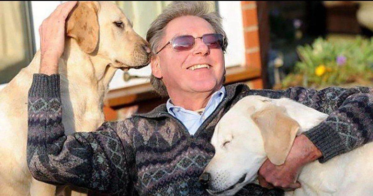 Un chien d'aveugle perd l'usage de ses yeux et se fait guider par un autre chien