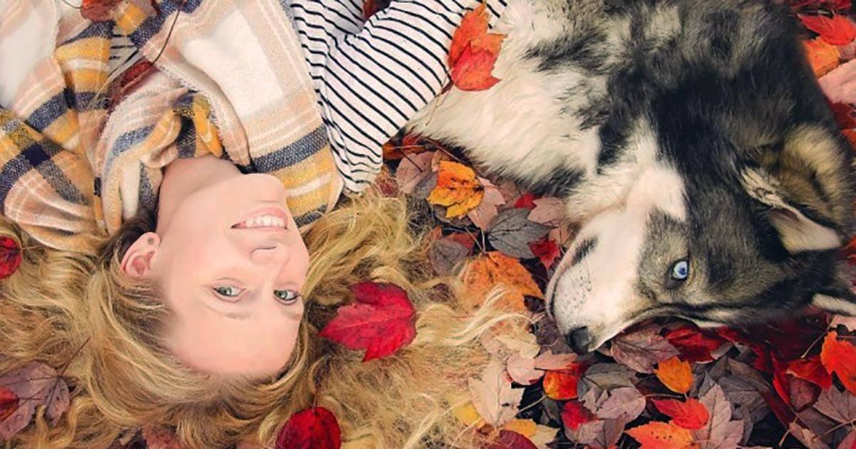 Cette femme battue à été sauvée grâce à un jeune husky qui a changé...