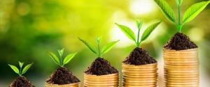 Finance et climat: les ONG pointent du doigt les...
