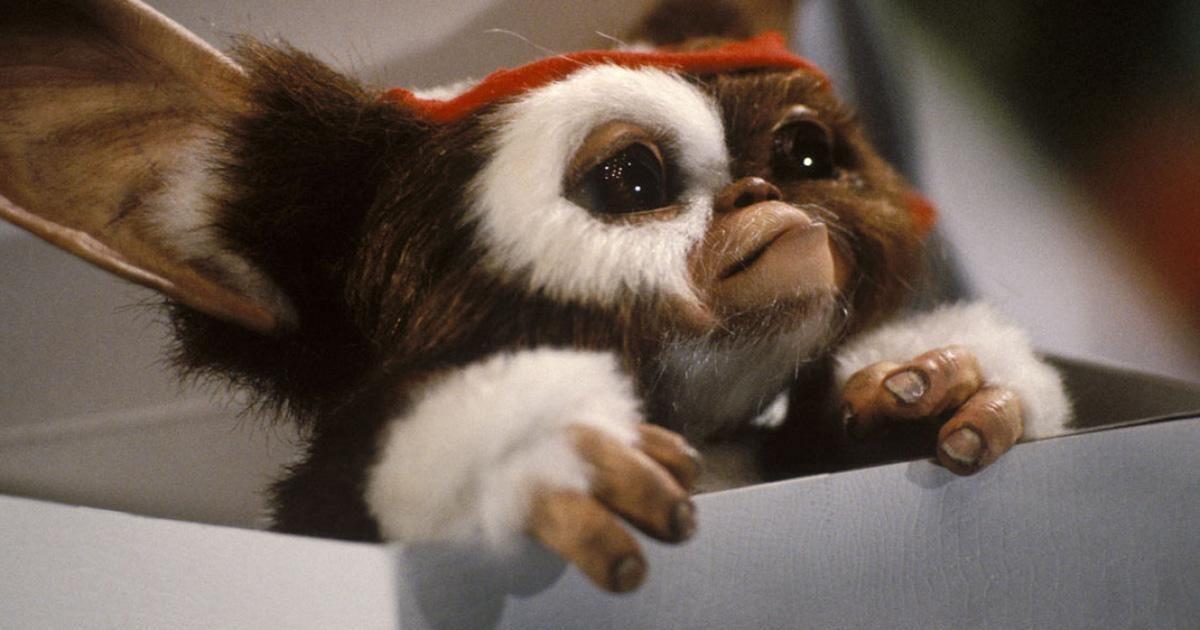 « Gremlins 3 », en préparation, ne sera pas un remake
