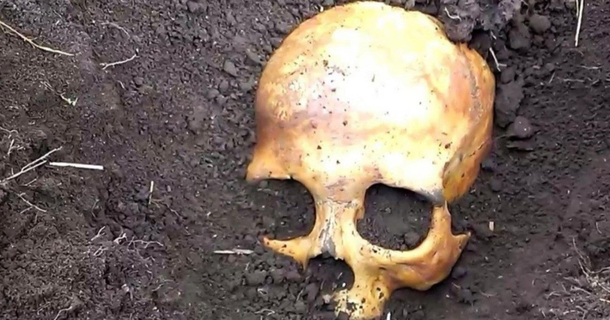 Un homme russe découvre un crâne enterré dans son jardin