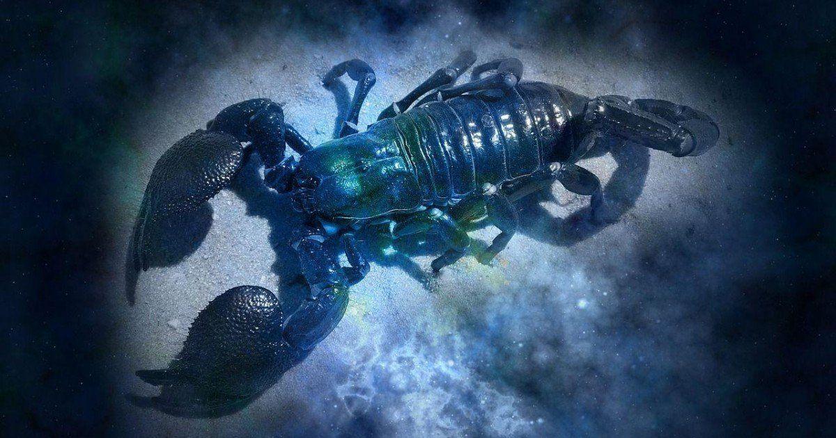 Découvrez notre horoscope 2020 scorpion gratuit réalisé par notre astrologue