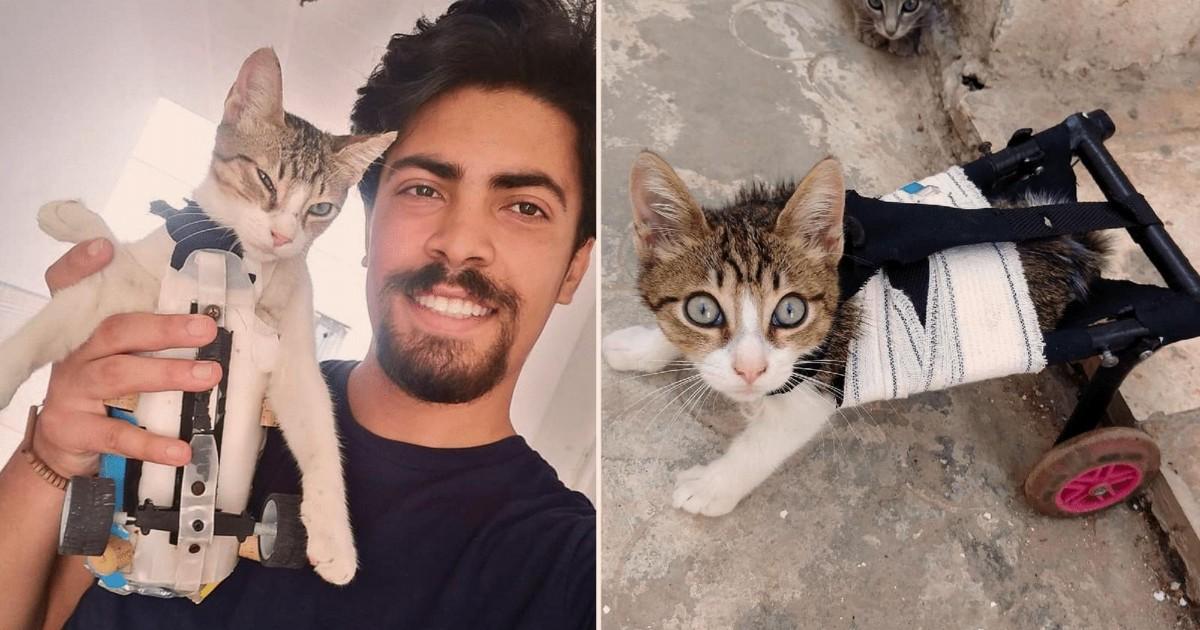 Ce jeune homme de 23 ans vient en aide aux animaux handicapés