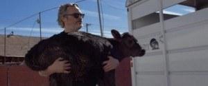 Il sauve une vache et son bébé d'une mort certaine dans...