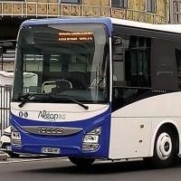 5 raisons de louer un bus avec chauffeur pour vos sorties en groupe