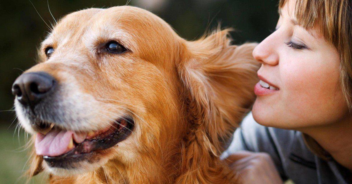 Vous parlez à votre animal de compagnie, alors vous êtes plus intelligent