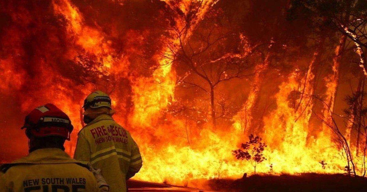 20 photos dévastatrices des incendies en Australie (qui décevraient Greta...