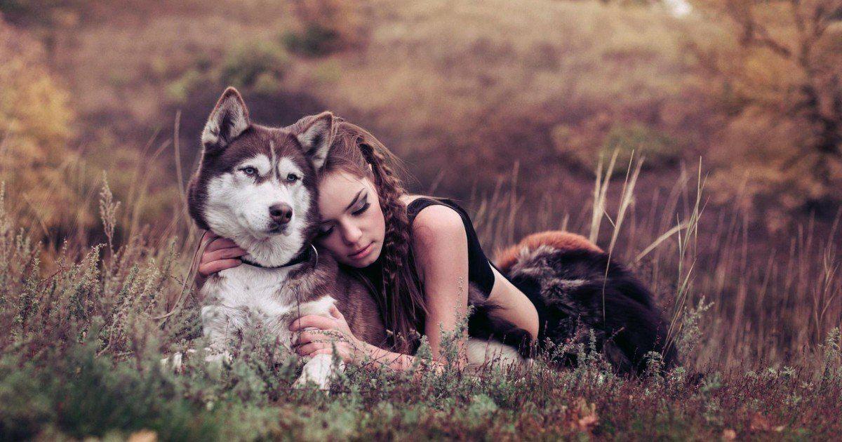 12 signes qui prouvent que vous avez vraiment besoin d'un animal de compagnie !
