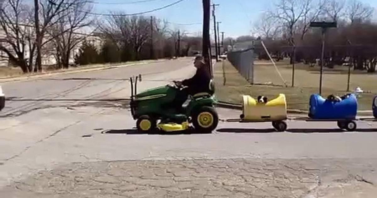 Un retraité construit un train pour promener les chiens abandonnés
