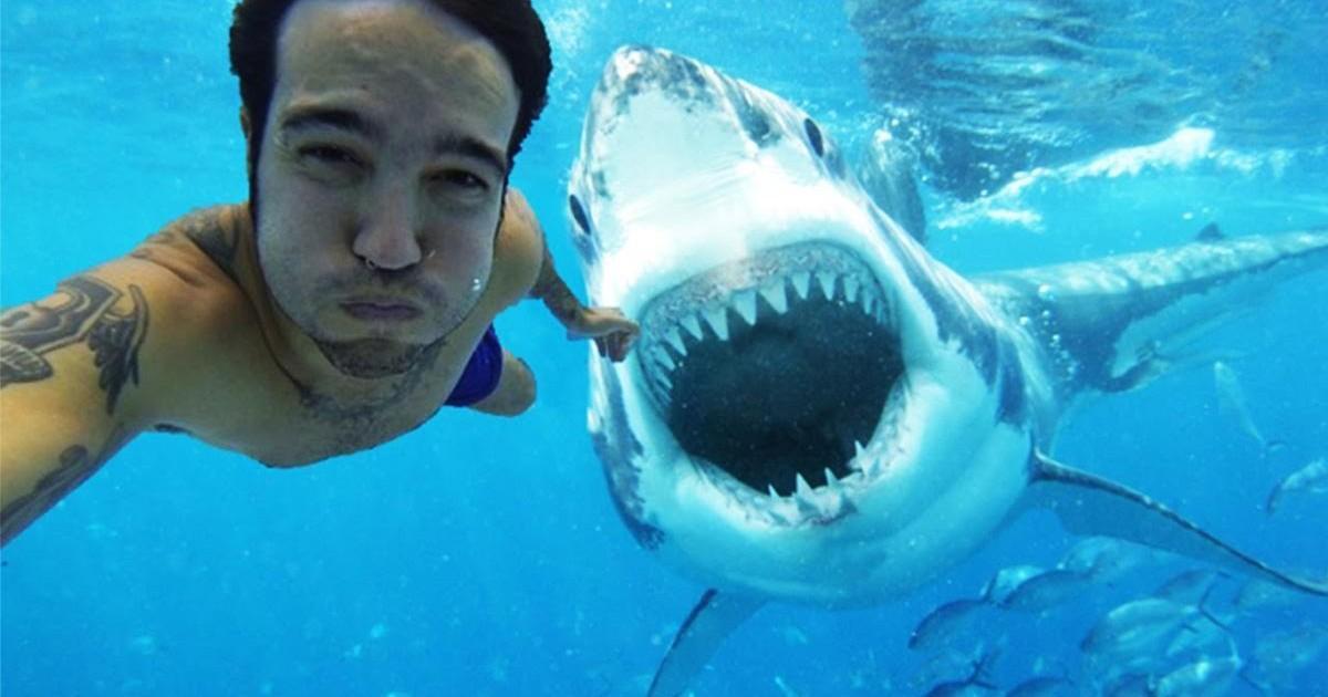 Les selfies, plus dangereux que les attaques de requins