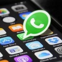 Télécharger l'application WhatsApp pour rester en contact
