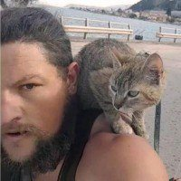 Il fait le tour du monde en vélo avec un chaton qu'il a trouvé sur la route