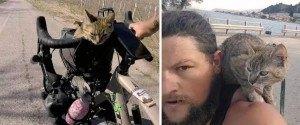 Il fait le tour du monde en vélo avec un chaton qu'il a trouvé sur...