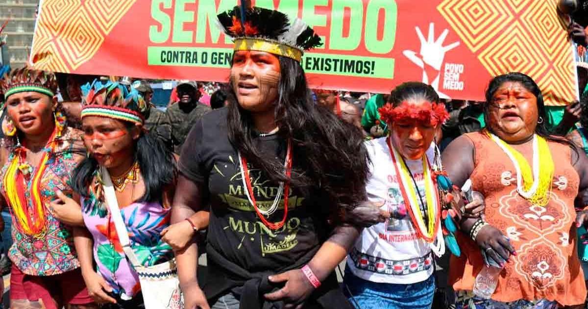 Une victoire pour les indigènes d'Amazonie face à la déforestation